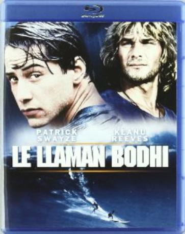 LE LLAMAN BODHI BR