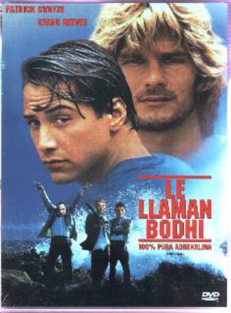 LE LLAMAN BODHI DVD